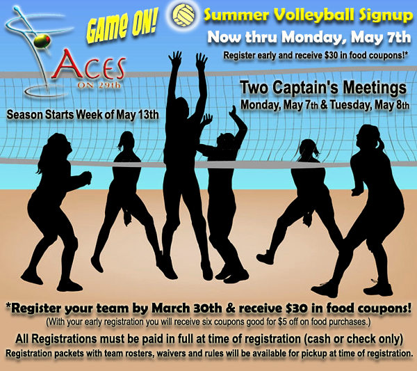 Volleyball Poster copy